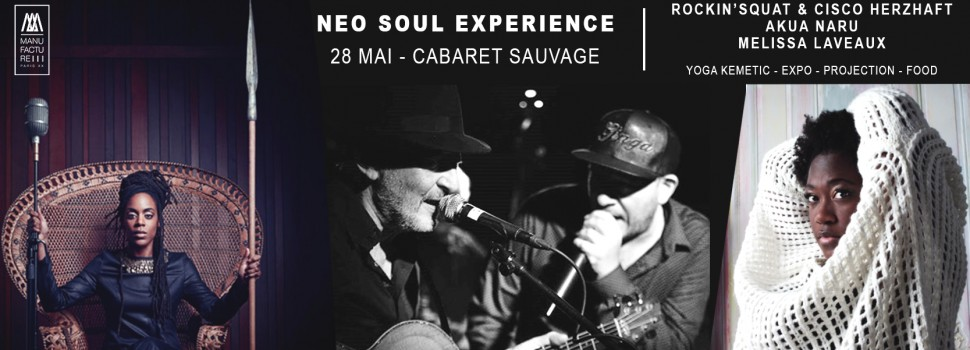 Festival-neo-soul-experience